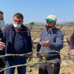CHP'li Başevirgen: '2 milyon çiftçinin 20 bini yapılandırmadan yararlanacak'